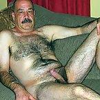 Hairy_silverfox