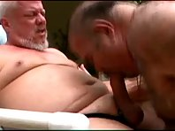 Daddy_bear_play